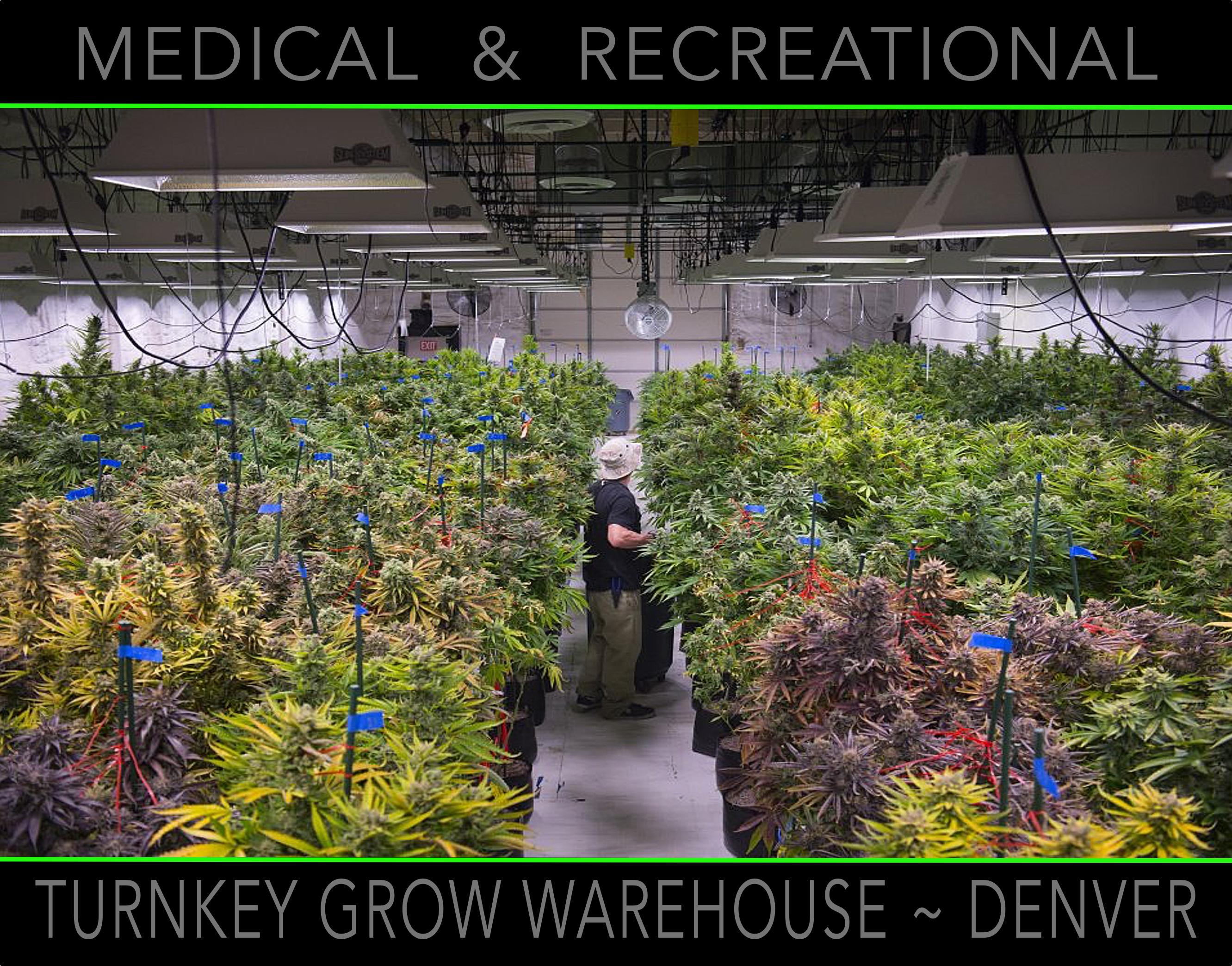 Denver Grow2