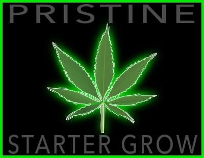 Starter Grow